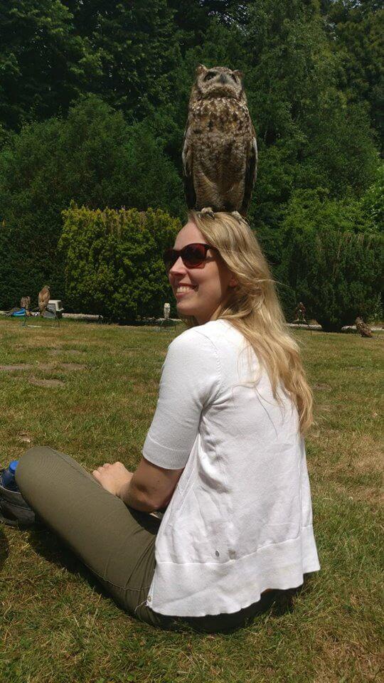 persoon, zitten, lucht, boom, gras, plant, wolk, buiten en natuur